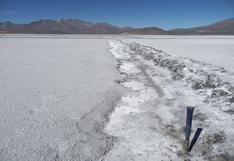 Elecciones, política económica y litio. Bolivia y las lecciones para Argentina